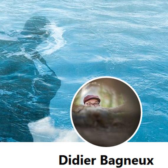 En mémoire de Didier BAGNEUX (Collègue et ami)