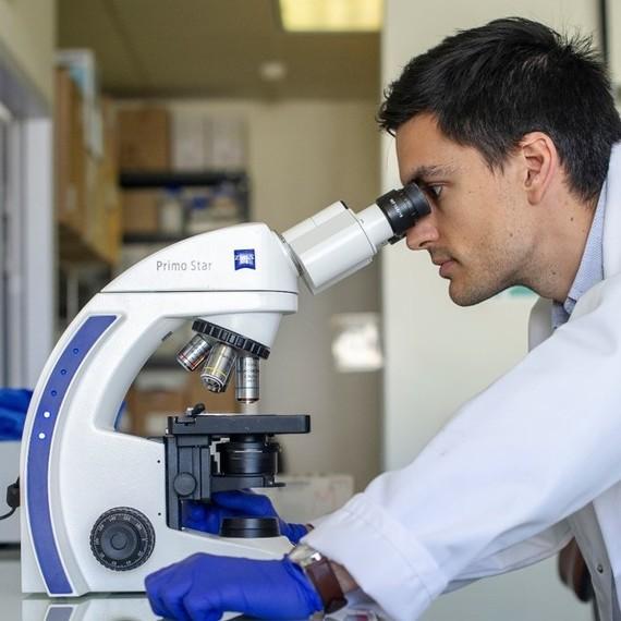 Laurie pour l'équipe de recherche Caux : Ciblage de la tumeur et de son environnement immunitaire